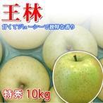 王林りんご 長野県産 10kg 特秀 お歳暮 ギフト