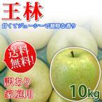 王林りんご 信州産 10kg 訳あり お得な家庭用 送料無料