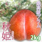 晩生プラム 秋姫 2kg  長野県産