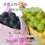 [ポイント5倍] ナガノパープル&シャインマスカット セット ハウス 2キロ4-5房 高級フルーツ