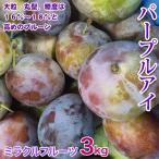 パープルアイ プルーン3kg 25-30個入り 長野県産