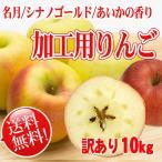 加工用りんご [送料無料] やわらかりんご混 10kg ジュースジャムなど加工用に。