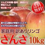 さんさ 10kg 送料無料 長野県産 家庭用 わけあり 早生りんご