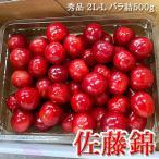 お中元 さくらんぼ 佐藤錦 贈答用 秀Lサイズ以上 500グラム バラ詰