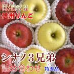 シナノ3兄弟 約3kg 9玉 特秀 ご贈答・お試しに最適りんご詰めあわせ ギフト 長野りんご 送料無料