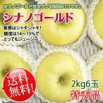 シナノゴールド 送料無料 長野県産 特秀 6玉 約2kg
