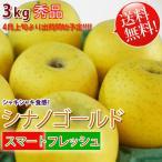 シナノゴールド 「スマートフレッシュ」貯蔵りんご 長野県産 秀品 3kg 「送料無料」リンゴ