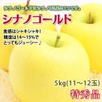 シナノゴールド 長野県産 リンゴ 特秀 5kg11-12玉