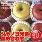りんご詰め合わせ シナノ3兄弟 約2kg 6玉 ギフト りんごセット 送料無料