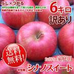 シナノスイート 長野りんご -訳あり- 送料無料  約6kg 家庭用