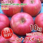 シナノスイート リンゴ 信州産 訳あり 約10kg 家庭用 お得な家庭用 -長野りんご