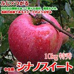 シナノスイート 長野県産 10kg24-26玉 特秀 注目度No.1フルーツ