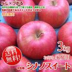 シナノスイート リンゴ 訳あり 送料無料 約3kg家庭用 長野産