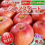シナノスイート リンゴ 「スマートフレッシュ」貯蔵りんご 長野 5kg 秀品 送料無料