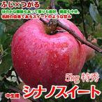 シナノスイート 長野県産 5kg12-13玉 特秀 信州スイーティー