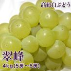 翠峰 高級大粒白ぶどう 4kg 5-6房
