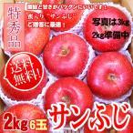 [送料無料] サンふじ 信州産 2kg 特秀 6玉 人気りんご  お年賀 ギフト