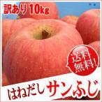 はねだしサンふじ リンゴ 約10kg 送料無料 長野りんご