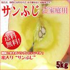 サンふじ 長野 りんご 送料無料  5kg 家庭用 キズやサビ 中小玉混 訳あり リンゴ