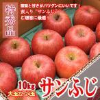 サンふじ 信州りんご 10キロ 特秀 大玉 22-24玉 お歳暮