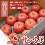 サンふじ 信州りんご 5キロ 特秀 大玉 11-12玉 お年賀