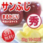 まるかじり-サンふじ 秀品小玉 5kg 18〜22玉【長野りんご】 送料無料 リンゴ