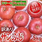 [送料無料] サンふじ 「スマートフレッシュ」貯蔵りんご 信州産 5kg 11~18玉 家庭用 訳あり リンゴ