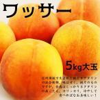 ワッサー 大玉 5キロ 桃とネクタリンの自然交配の果実♪
