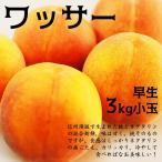ワッサー 小玉 3kg 桃とネクタリンの自然交配果実