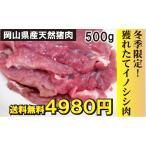 いのししモモ肉 岡山県産 500g 冬季限定 送料無料 冷蔵 日時指定不可 ぼたん 焼肉 BBQ