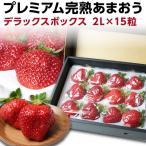 いちご あまおう ギフト 完熟 苺 福岡県産 2L  15粒 デラックス 400g以上 イチゴ グルメ