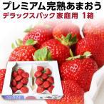 あまおう 福岡産 完熟あまおう280g以上 ×2パック/ いちご 苺 ご家庭用 農家直送 デラックスパック 1箱