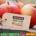 ポイント10倍 りんご サンふじ 完熟蜜入り5kg 青森県南部産 樹成り完熟 ご家庭用  送料無料 グルメ
