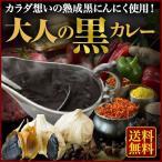 カレー 厳選スパイス 大人の黒カレー200g×3袋 熟成黒にんにく使用!