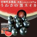 スイカ うわさの黒スイカ 1玉 7kg 種無し 日田産 すいか 秀品 2L/3Lサイズ お中元 贈答