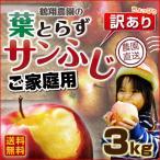 りんご 青森 葉とらず サンふじ ご家庭用 3kg(8〜14玉) ちょっぴり 訳あり 送料無料 産直 世界が認めたリンゴ グルメ