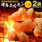 ホルモン 宮崎県産 黒毛和牛 博多ホルモン焼き 200g×2袋 丸腸 マルチョウ うま塩味 赤みそ味 BBQ クール