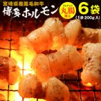ホルモン 宮崎県産 黒毛和牛 博多ホルモン焼き 200g×6袋 丸腸 マルチョウ うま塩味 赤みそ味 クール