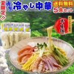 冷やし中華 5食セット 新食感 博多細麺 夏限定 半生麺 特製レモンつゆ メール便 送料無料