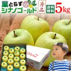 シナノゴールド リンゴ ギフト 青森 葉とらず 贈答用 5kg(16〜18玉) 送料無料 フルーツ お誕生日 内祝い プレゼント 秀品 産直