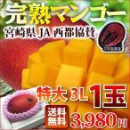 マンゴー 宮崎マンゴー 完熟マンゴー特大3L玉(450g以上) JA西都協賛光センサー完全選果 ポイント5倍mango