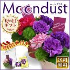 母の日ギフトに Moondust ムーンダスト アレンジ鉢 世界で唯一の幸せを願う青いカーネーション!生花初グッドデザイン賞