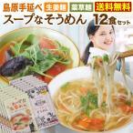 スープで食べる手延べめん  スープなそうめん 12食セット 生姜麺 薬草麺 選べる2つの味 低カロリー ヘルシー メール便送料無料