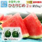 スイカ ひとりじめ 秀品 2玉 熊本県産 植木スイカ 送料無料 小玉 すいか フルーツ 果物 甘い フルーツの里 産地直送 贈答用 S常