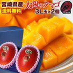 父の日  ギフト マンゴー ポイント10倍 宮崎マンゴー 太陽のタマゴ 特大3L玉(450g以上)×2玉 太陽のたまご JA西都協賛光センサー完全選果  mango