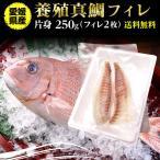 鯛 刺身 フィレ マダイ 真鯛 フィレ(皮無し)2枚 250g 送料無料 海鮮 魚介 冷凍 真空パック