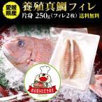 鯛 刺身 フィレ マダイ 真鯛 フィレ(皮無し)2枚 250g 送料無料 海鮮 魚介 冷凍 真空パック #元気いただきますプロジェクト(水産物)