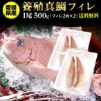 鯛 刺身 フィレ マダイ 真鯛 1尾 フィレ(皮無し)2枚×2 500g 送料無料 海鮮 魚介 冷凍 真空パック