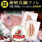 鯛 刺身 フィレ マダイ 真鯛 1尾 フィレ(皮無し)2枚×2 500g 送料無料 海鮮 魚介 冷凍 真空パック #元気いただきますプロジェクト(水産物)