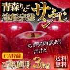 サンふじりんご 3kg ご家庭用 CA貯蔵  送料無 青森県 津軽完熟  ポイント5倍